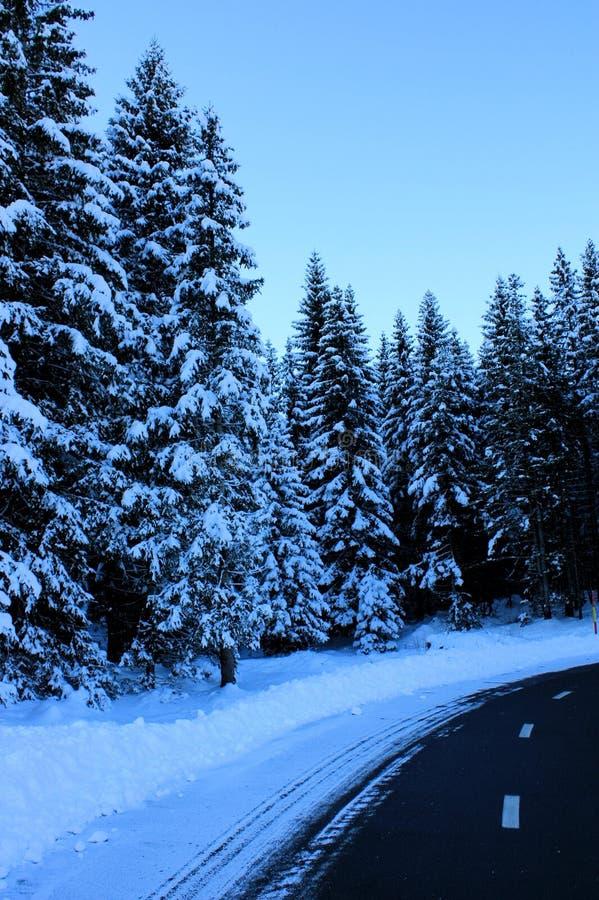 Snöig väg i den SoriÅ ¡ kaen, Slovenien fotografering för bildbyråer