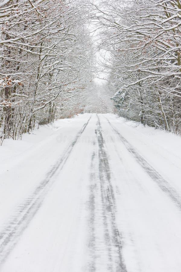 snöig väg, Tjeckien royaltyfri foto