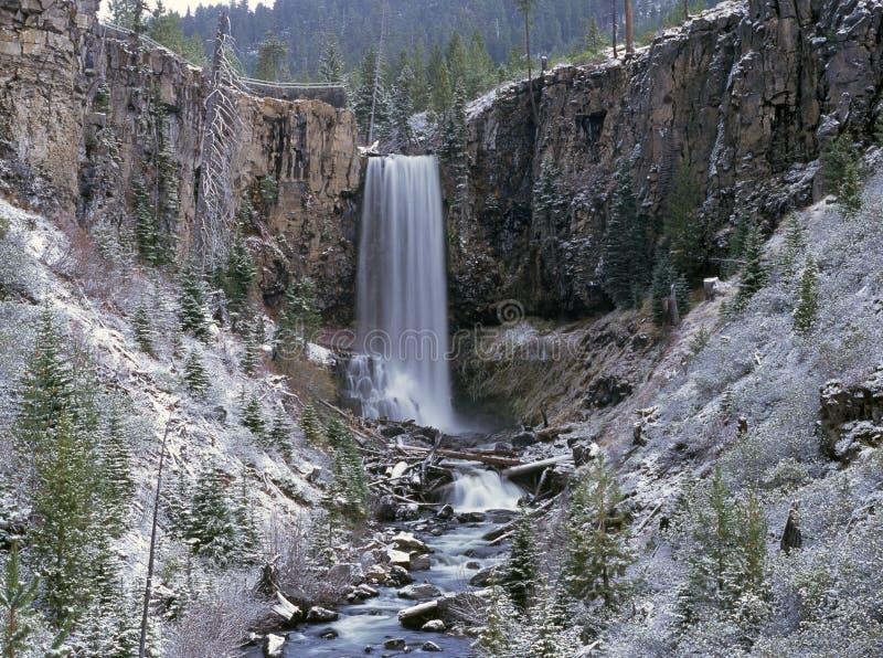 snöig vattenfall arkivbild