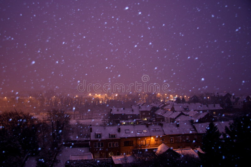 snöig vinter för natt royaltyfri fotografi