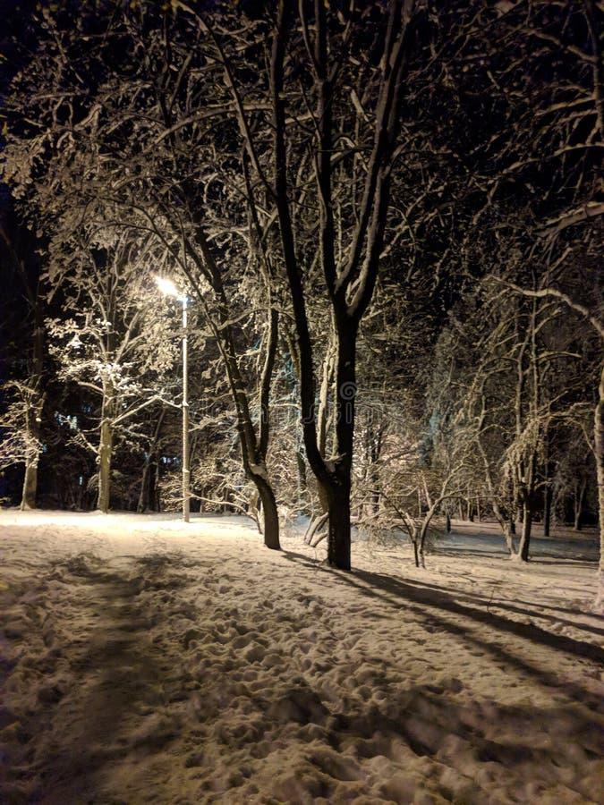 Snöig vinter sagolikt lynne snow arkivbilder