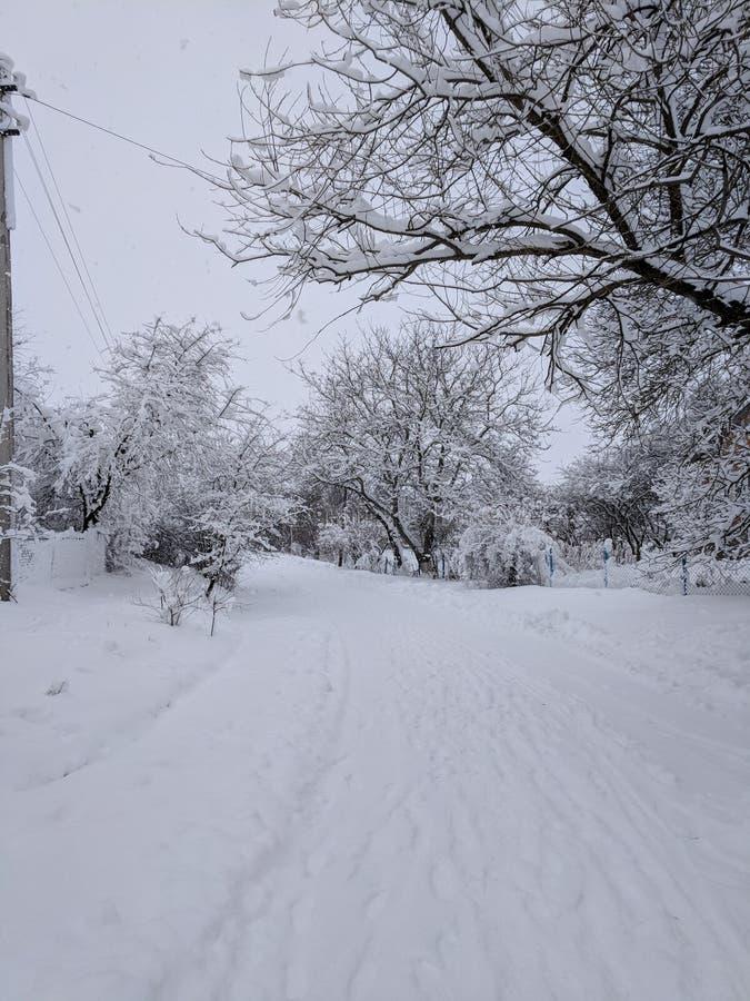 Snöig vinter sagolikt lynne snow arkivbild