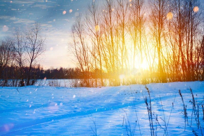 Snöig vinterjullandskap; solnedgång över snöängen royaltyfria bilder