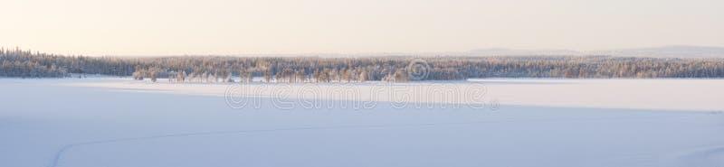 Snöig vinterlandskappanorama royaltyfri foto