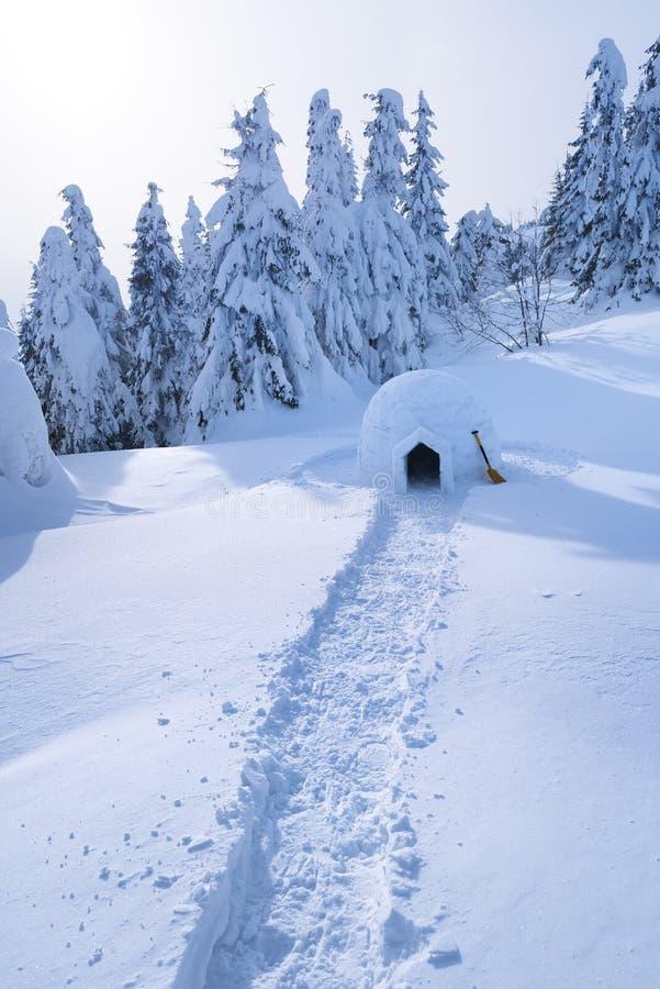 Snöigloo i bergen i vinter arkivfoto