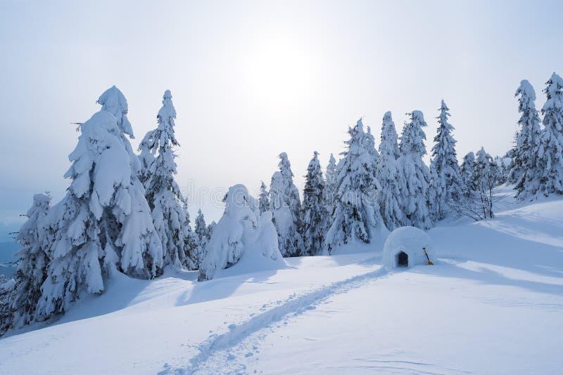 Snöigloo i bergen i vinter fotografering för bildbyråer
