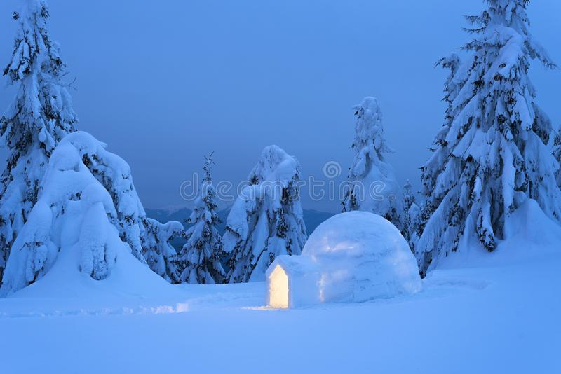 Snöigloo i vinterbergskogen royaltyfria foton