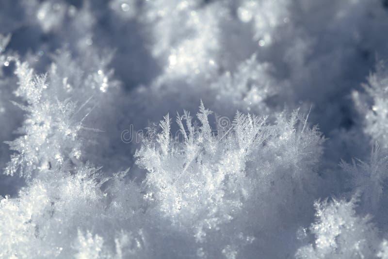 Download Snökristaller På Jordningen Arkivfoto - Bild av snowflake, stort: 78727396