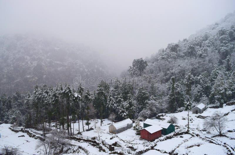Snönedgång, Misty Valley, kojor och träd - vinter i indisk by i Uttarakhand i Himalaya royaltyfria foton
