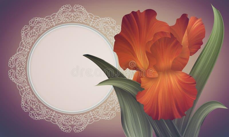 Snör åt den orange irins för fantasin på den färgrika bakgrunden med tappningramen stock illustrationer