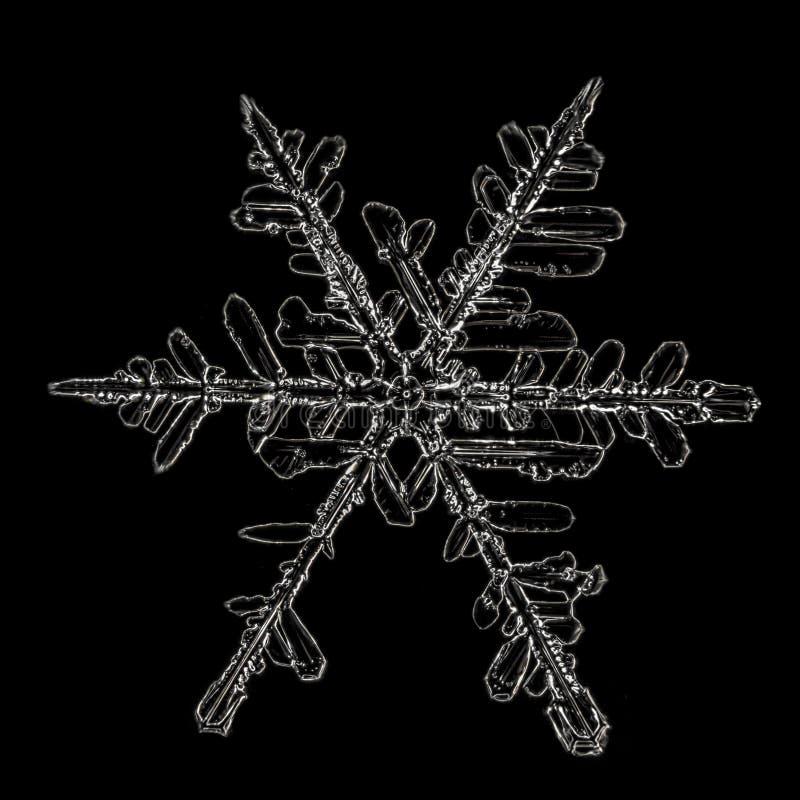 snör åt den svarta ramen för bakgrund snowflakesvinter arkivbilder