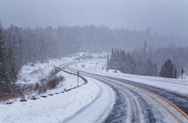 Snöstorm på Algonquin i vinter arkivfoton