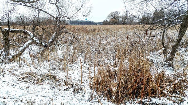 Snötäckt, markerat område på vinter arkivfoton