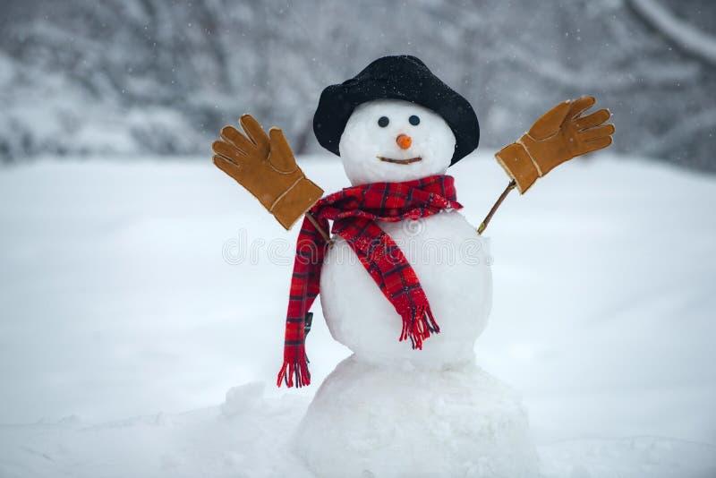 Sn?gubben b?r en p?lshatt och halsduk lyckligt nytt ?r vektor f?r snowman f?r bakgrundsjulillustration Lycklig snögubbe som in st arkivbild