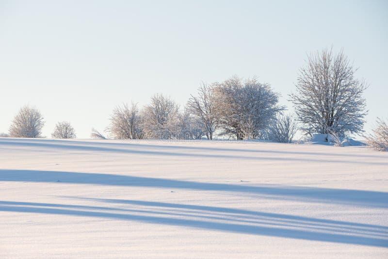 Sn?ig bygd Vinterlandskap i ?stliga Finland arkivbild