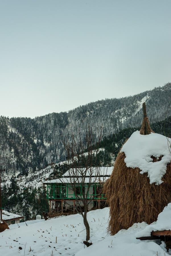 Sn? t?ckte tr?huset i berg - majest?tiskt vinterlandskap i himalayas fotografering för bildbyråer