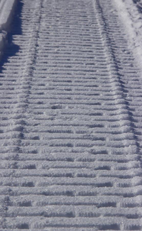 Sn?vesslaslinga i vintern arkivfoton