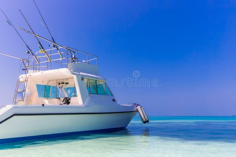 Snabb motorbåt för tropisk fiska yacht på blå havsbakgrund med metspön och linjer royaltyfri bild