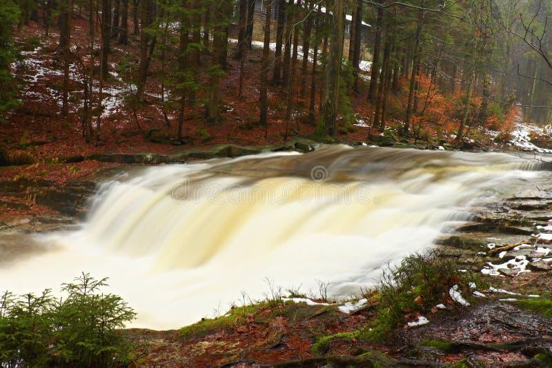 snabb ström Bergflod mycket av kallt vårvatten Stora stenar för häftklammermatare och skummande kyligt vatten omkring Oväsen av e royaltyfria bilder