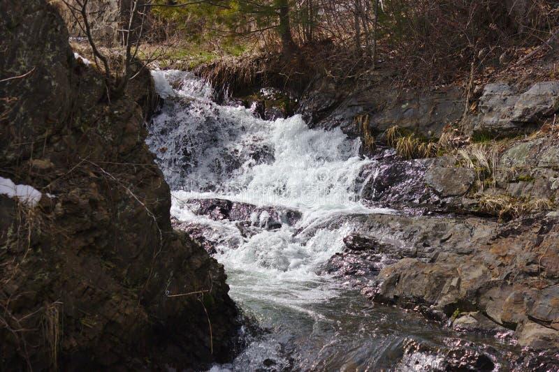 Snabb vattenfall i tidig vår royaltyfri bild