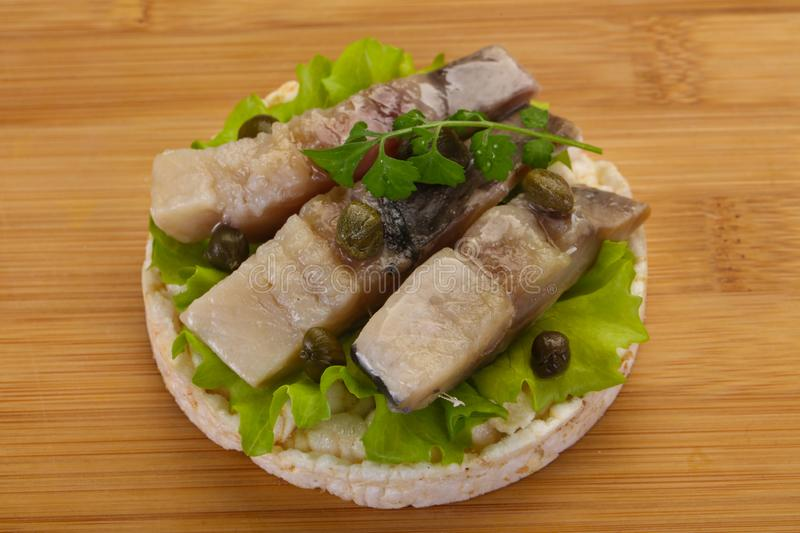 Snack with herring royalty free stock photo