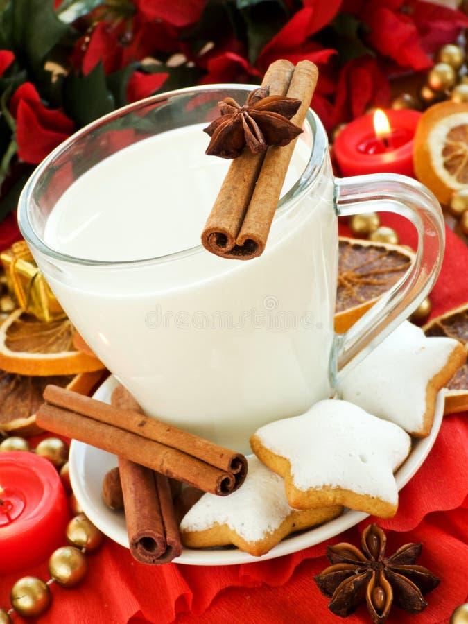 Snack for Santa stock photography