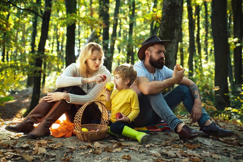 Snack time. Basket picnic healthy food snacks fruits. Mother father and small son picnic. Picnic in nature. Vacation and royalty free stock photo