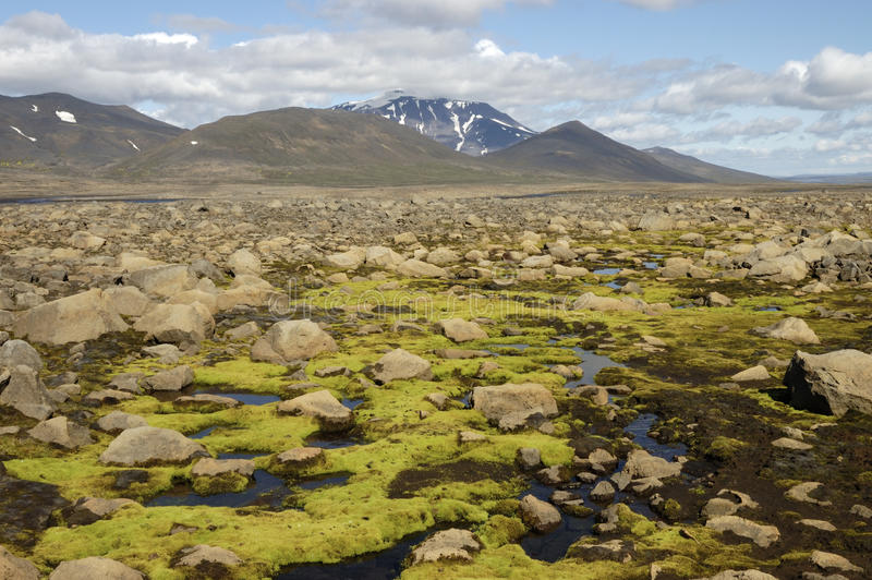 Snaefell wulkan 1833 m. wzrost, Iceland obraz royalty free