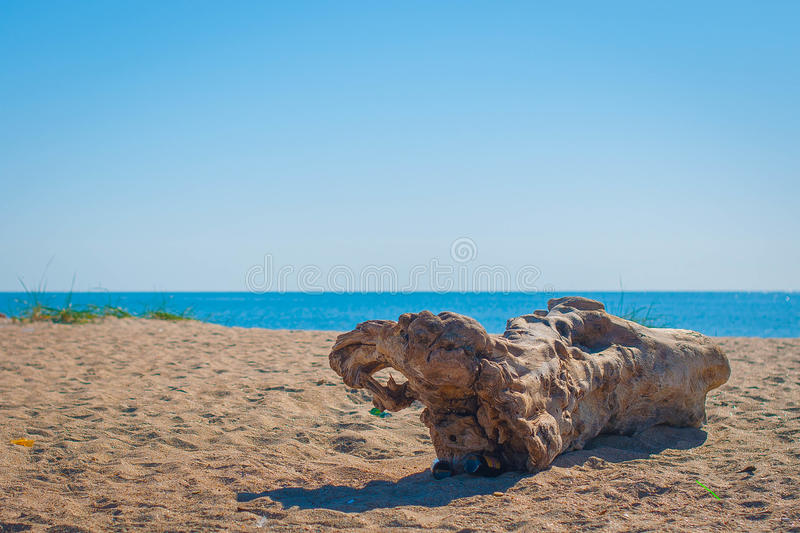 snag on the beach. Dawn in Ukraine stock image