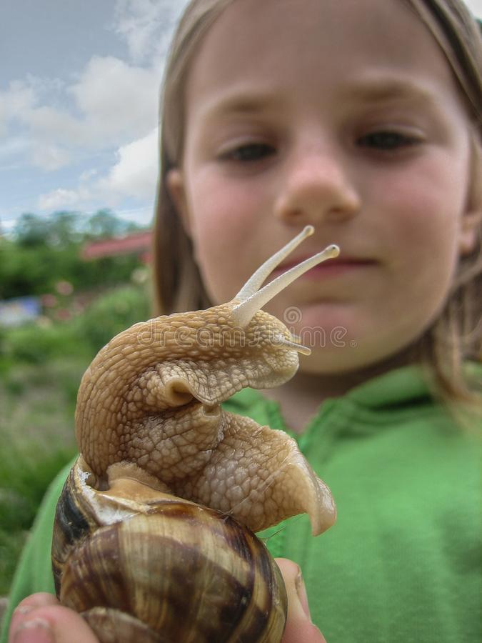 Snail closeup on the background of the face of the child.. Snail closeup on the background of the face of the child. the girl suspiciously looks at the snail stock photography