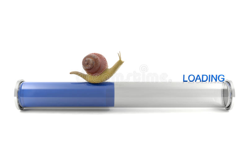 Snail crawling on download bar royalty free stock photography