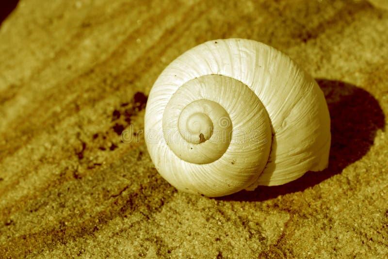 Snail house stock image