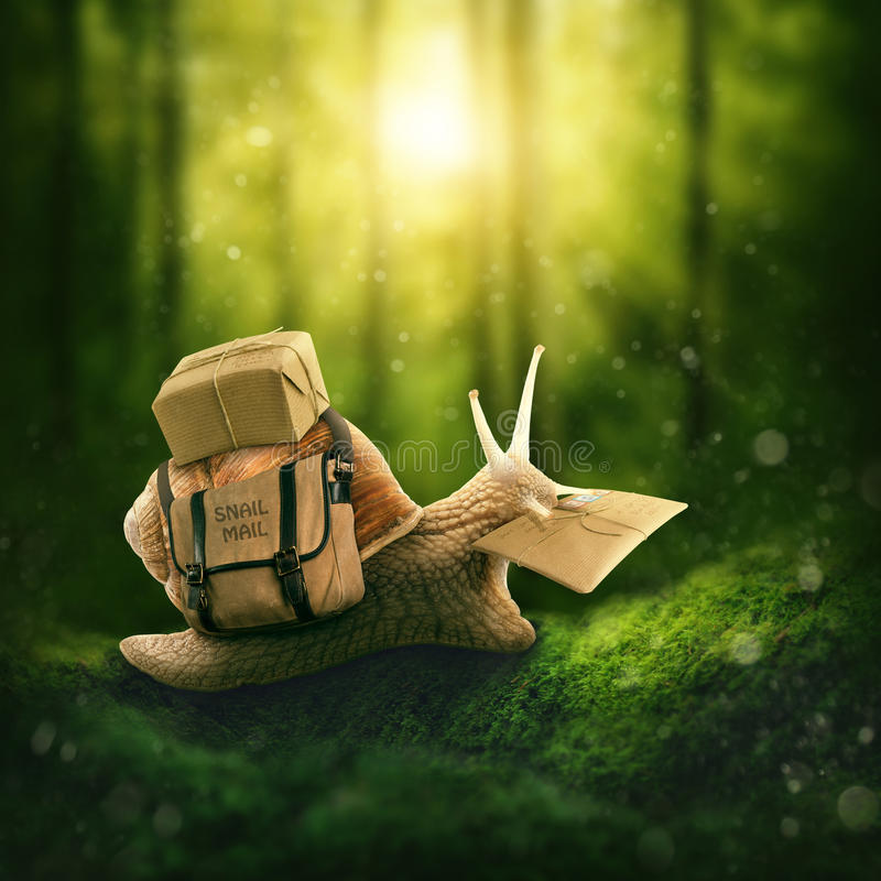 Snail with a letter. In the deep forest stock photography