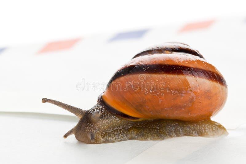 Snail mail stockfotografie
