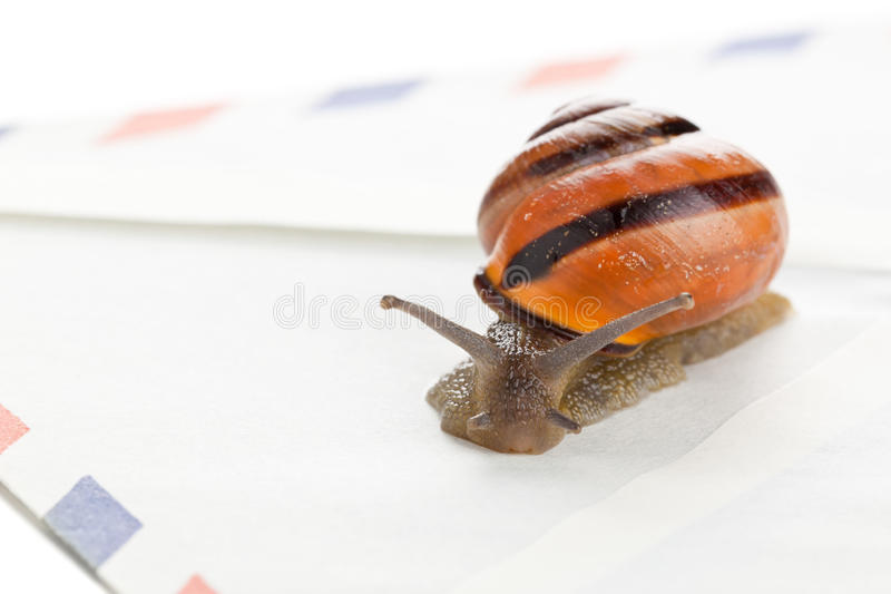 Snail mail royalty free stock photos