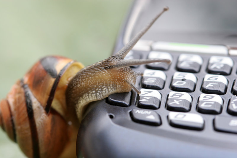 Snail on the phone royalty free stock photography
