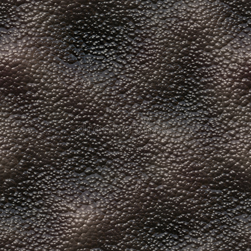 Download Snail skin stock illustration. Image of skin, seamless - 4148032