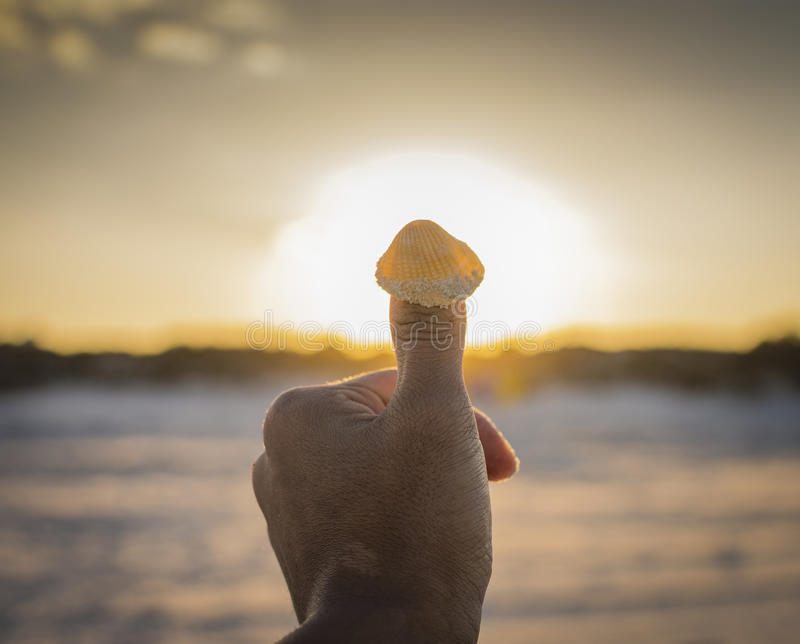 Snail|Sun. The sunset been covered with a hand and in the thumb finger is a snail stock photos