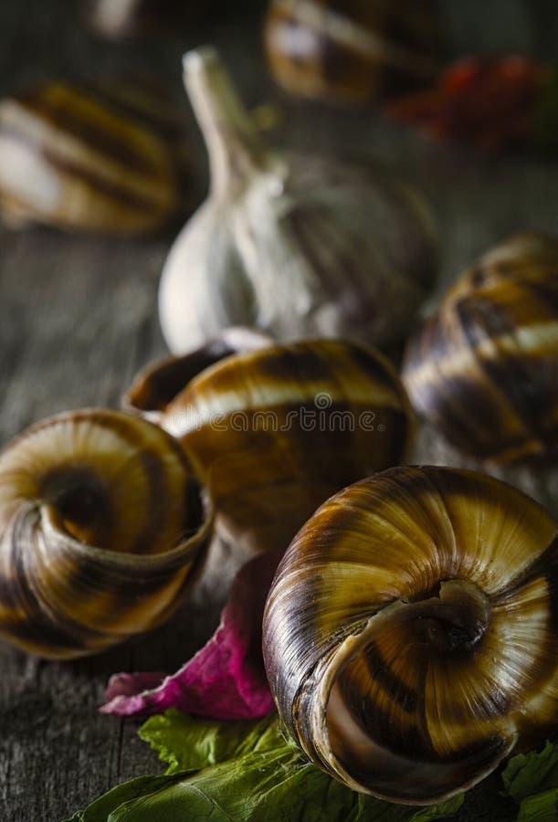 Snailes en knoflook stock afbeelding