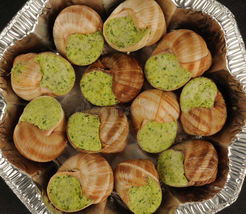 Download Snails Stock Photography - Image: 17924782