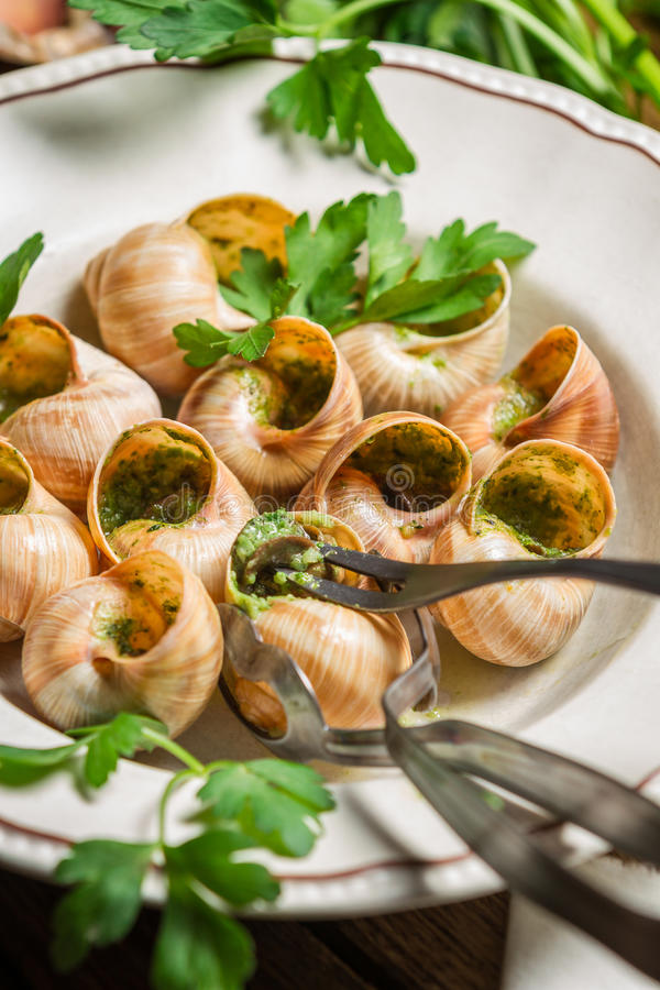 Snails baked in garlic butter served stock images