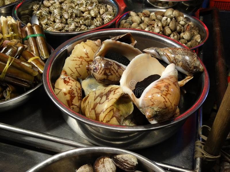 Snails, crabs and other seafood stock photos