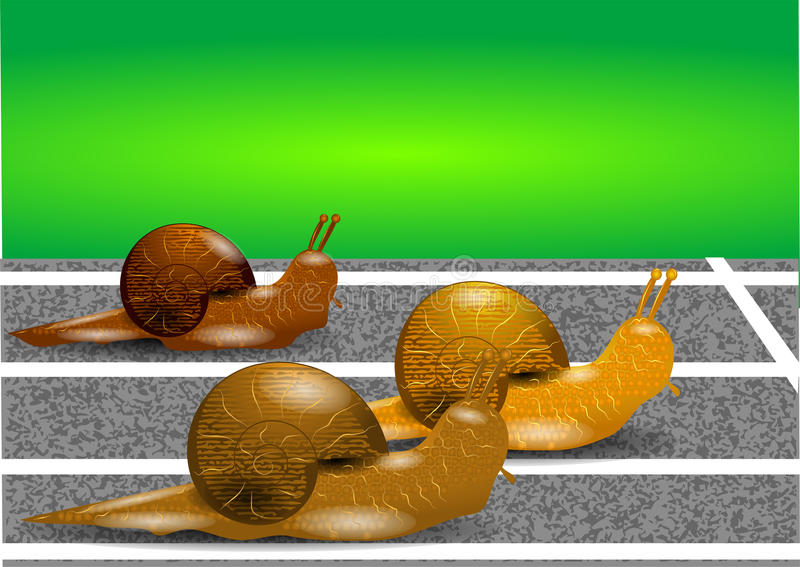 Download Snails on a racetrack stock image. Image of track, competition - 32210847