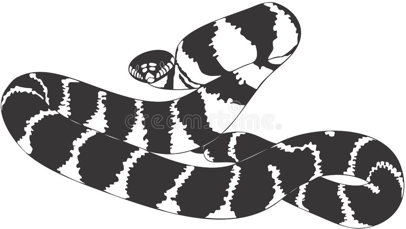Download Snake stock vector. Illustration of clipart, shell, nature - 1410193