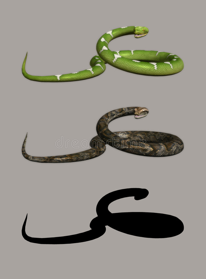 Snake stock illustration