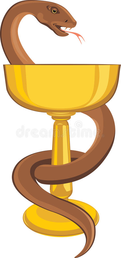 Snake around the cup royalty free stock images