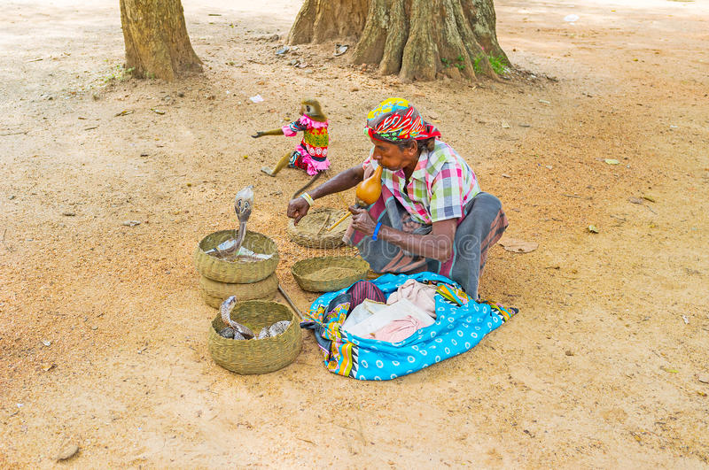 The snake charmer royalty free stock images
