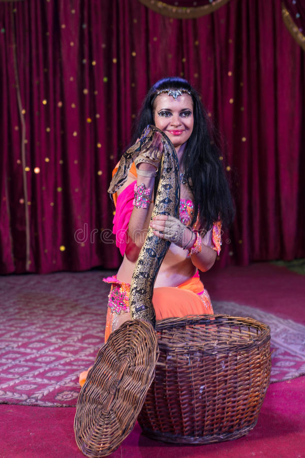 Snake Charmer Removing Large Snake from Basket. Portrait of Exotic Dark Haired Snake Charmer Removing Large Snake from Basket While Kneeling on Stage with Red royalty free stock photo