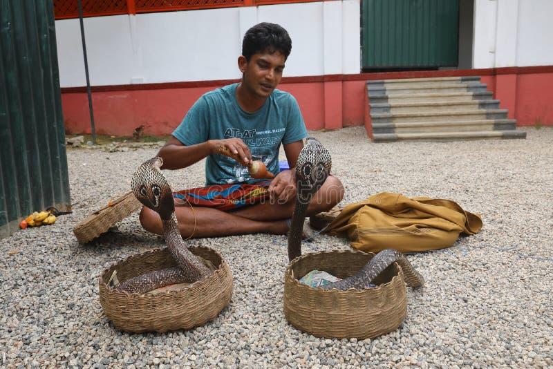 Snake charmer in Sri Lanka royalty free stock photos