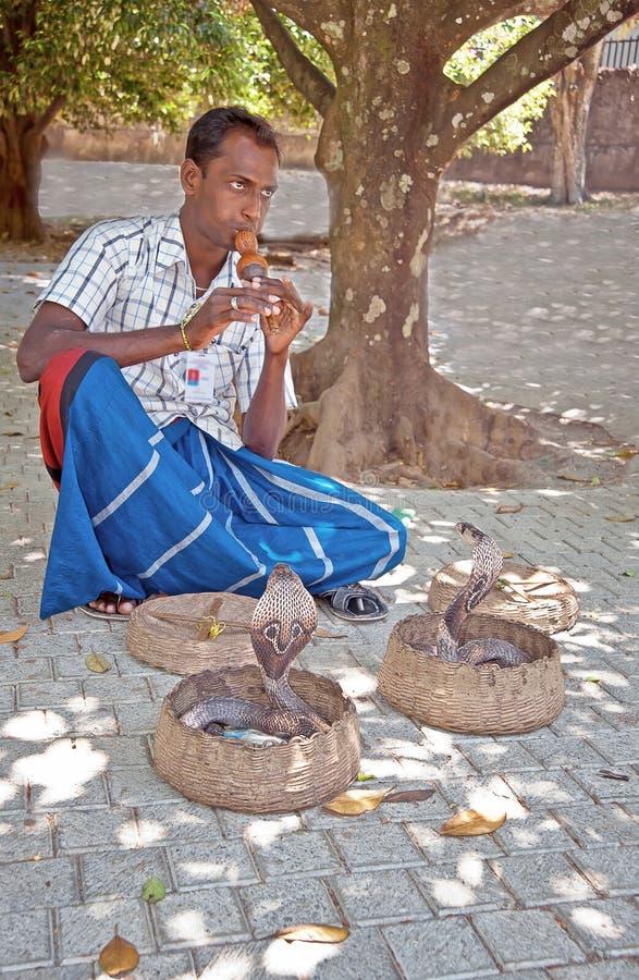 Snake charmer in Sri Lanka royalty free stock photo